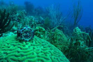 Testing Oris's Clever Depth Gauge In The Caribbean
