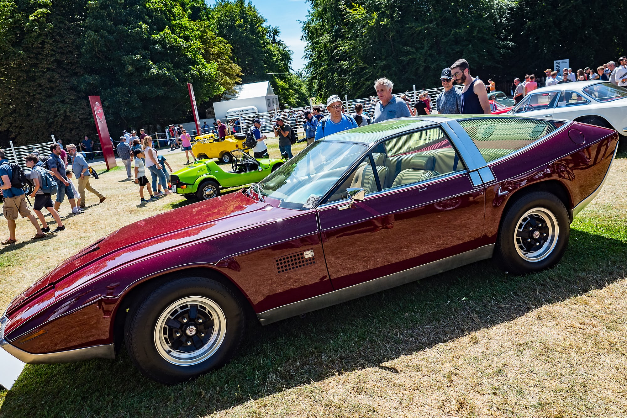 1972 Aston Martin DBS V8 Ogle  dispatches: with montblanc at the petrolhead's paradise that is the goodwood festival of speed Dispatches: With Montblanc At The Petrolhead's Paradise That Is The Goodwood Festival Of Speed P7021679