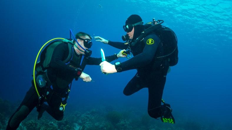 Dive hero.jpg?ixlib=rails 1.1  In-Depth: Seven Dive Watch Myths Deep-Sixed Dive Hero