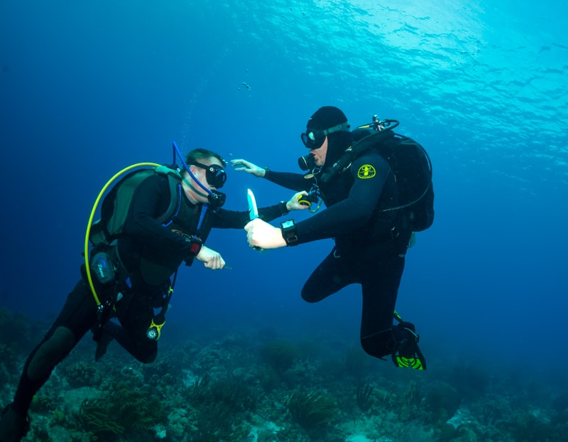 The author and friend reenact a Thunderball fight scene.  In-Depth: Seven Dive Watch Myths Deep-Sixed arm flailing fight