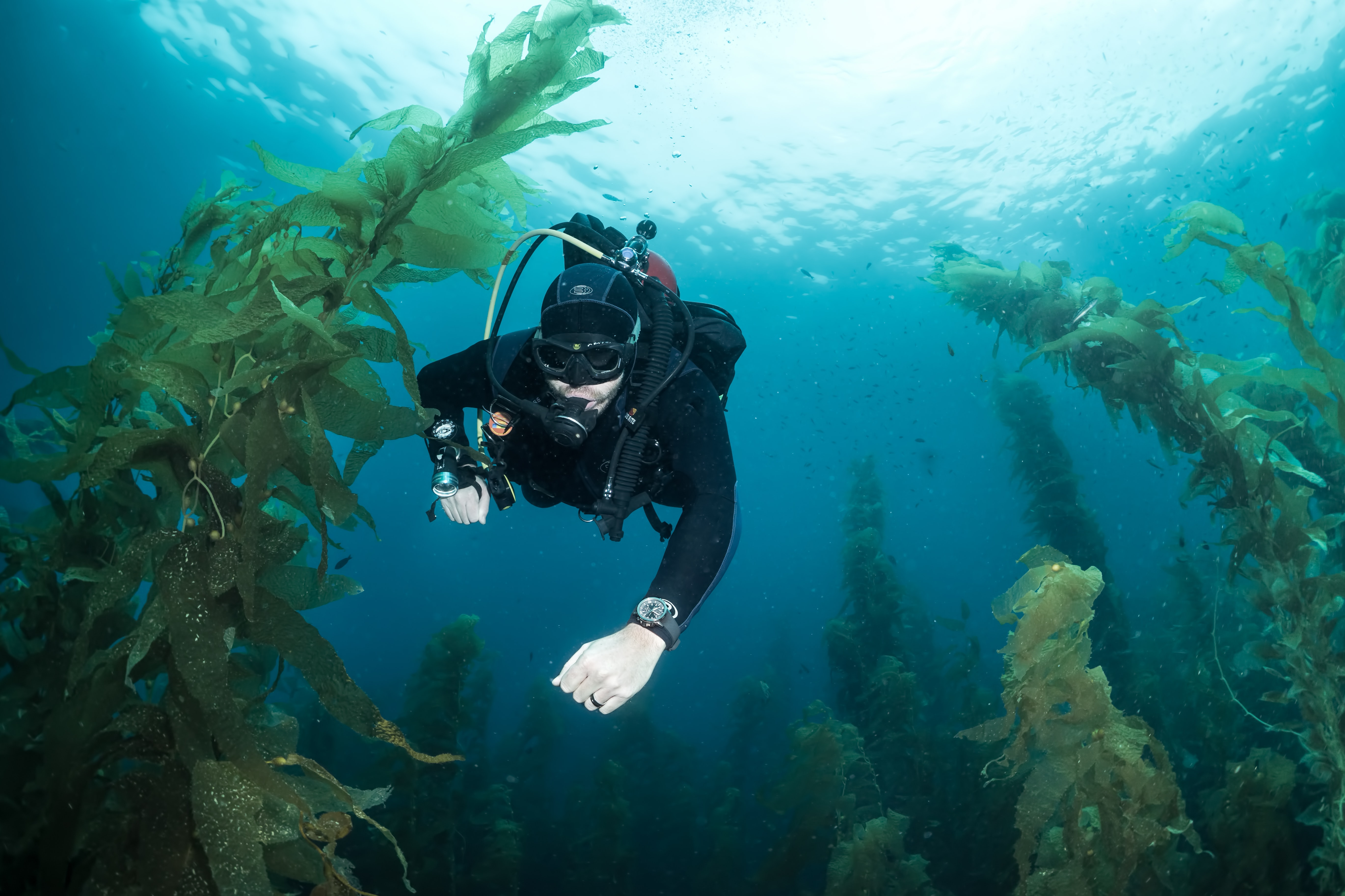In-Depth: Seven Dive Watch Myths Deep-Sixed divewatch general