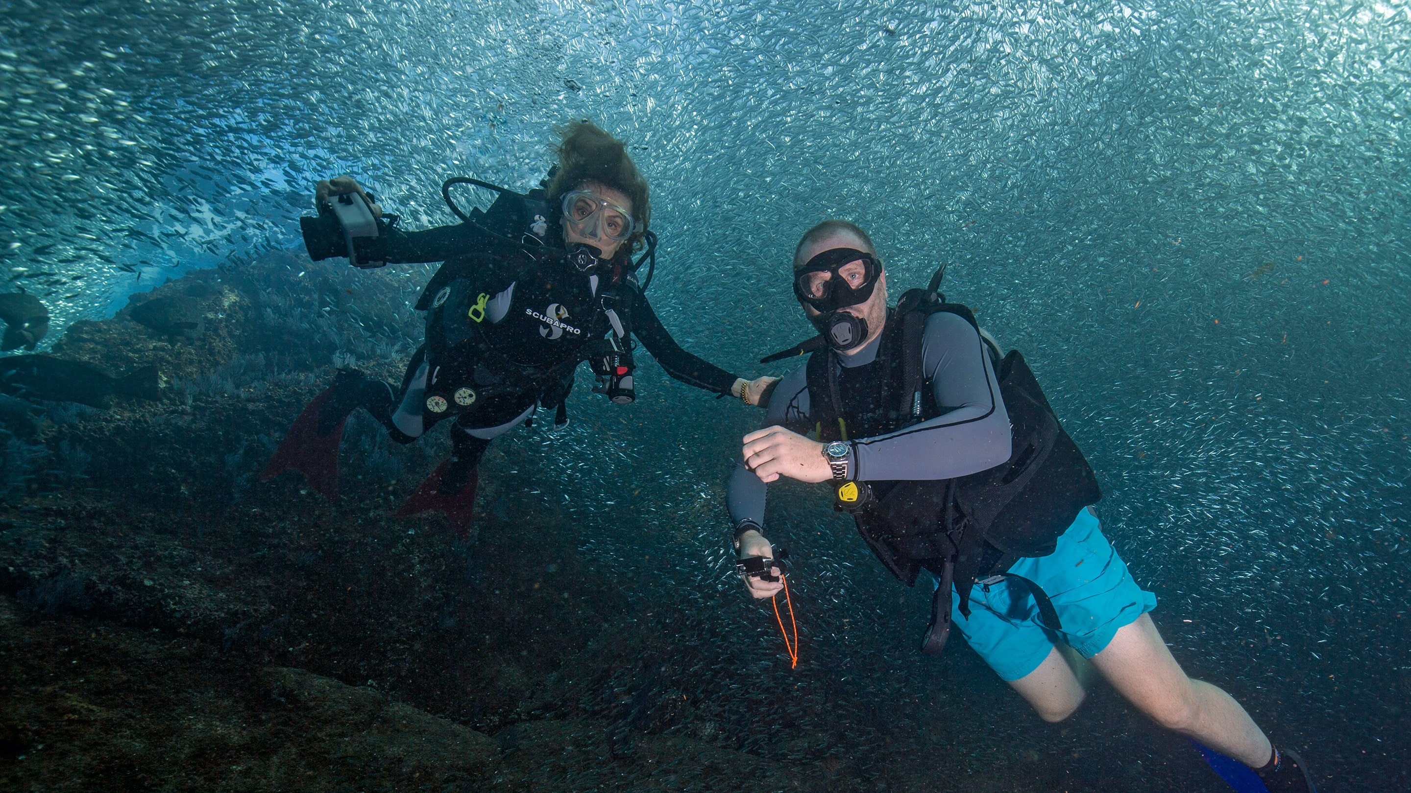 Hero.jpg?ixlib=rails 1.1  Dispatches: Diving With Her Deepness, Dr. Sylvia Earle hero