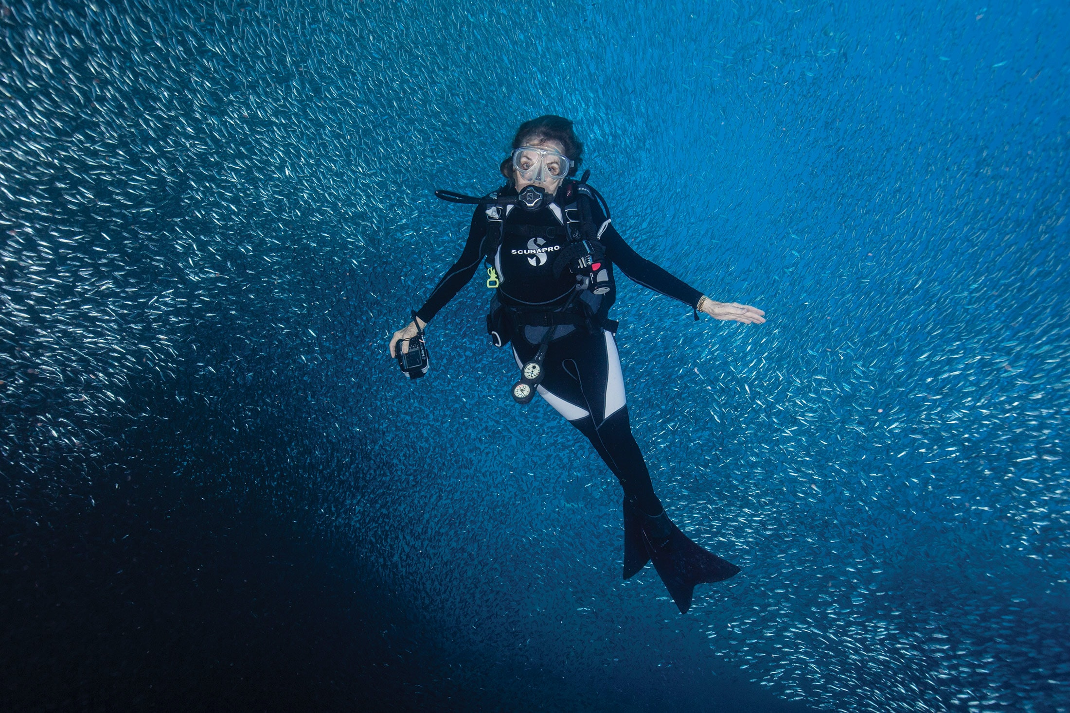 Dispatches: Diving With Her Deepness, Dr. Sylvia Earle Sylvia baitball