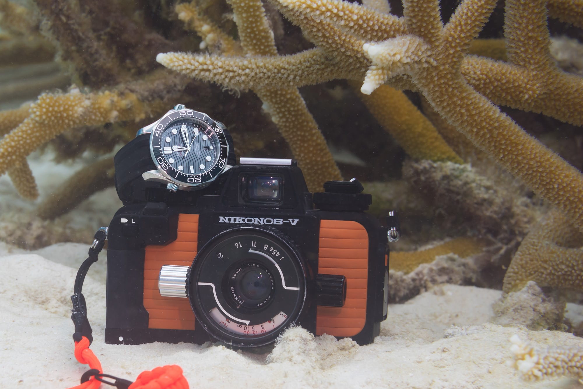 In-Depth: Diving With The Omega Seamaster Professional 300M SM300 pro UW 7